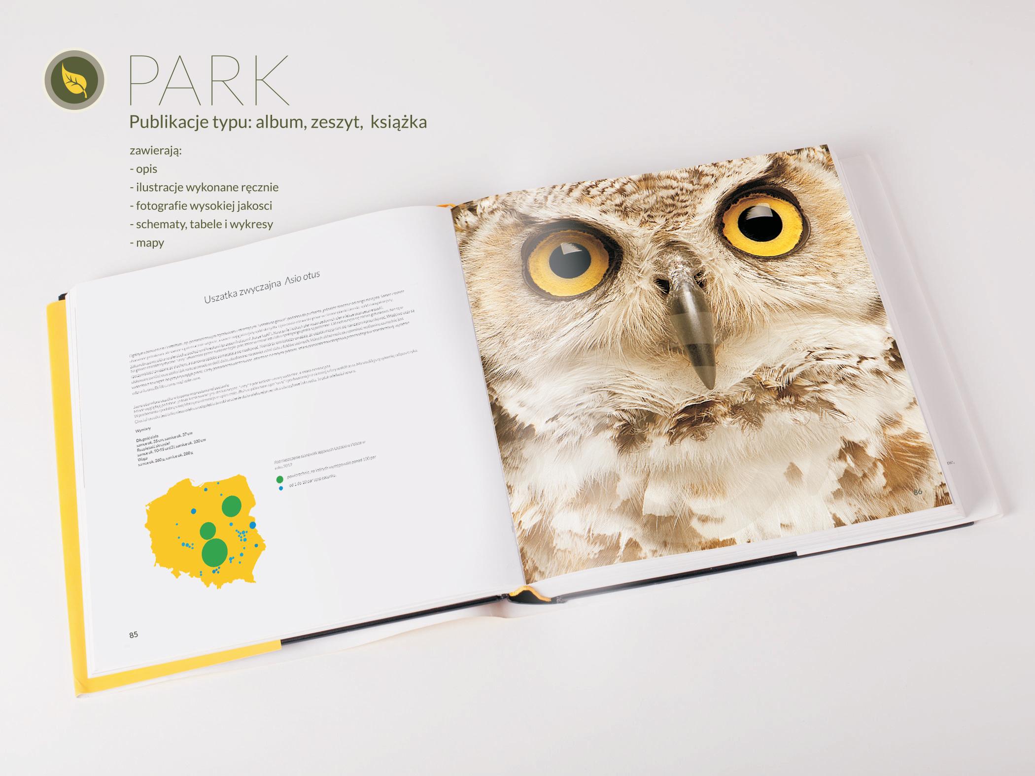 maciek_park_program produktowy